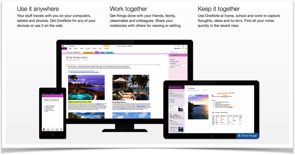 SharePoint Wiki vs OneNote